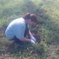 8月9日農業体験・昼食交流会